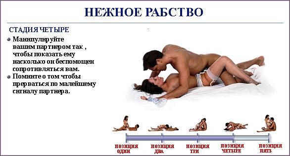 Пособие про секс про интимные места